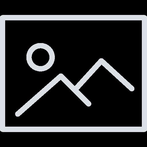 Website Front End Developer (Internee)